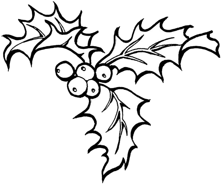christmas holly border coloring pages - photo#3