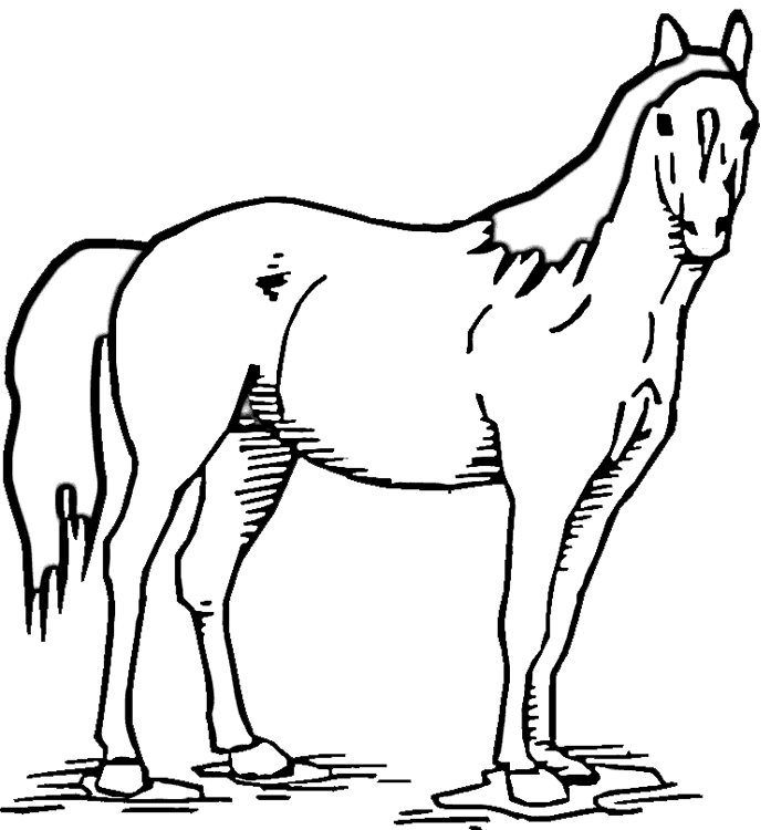 Horse Standing In Pasture Coloring Page