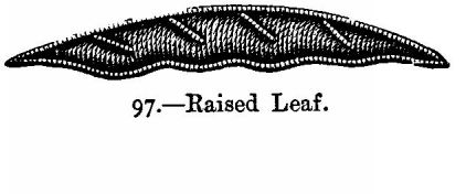 Raised Leaf.